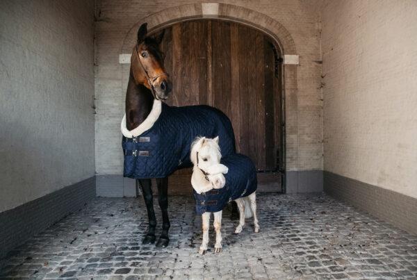 kentucky-horsewear-show-rug-navy
