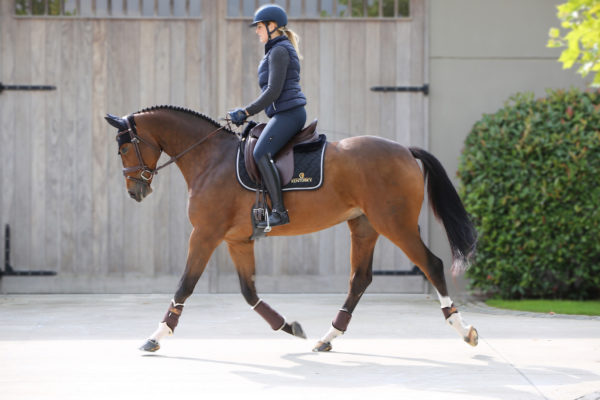 kentucky-horsewear-dressage-outfit