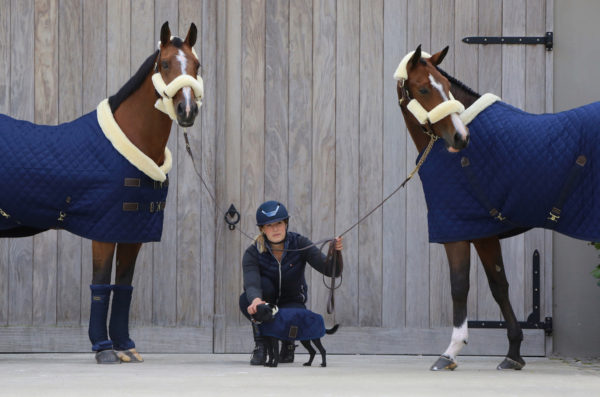 kentucky-horsewear-show-takaro-navy