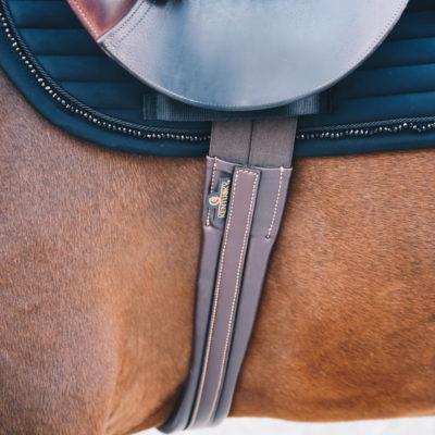 kentucky-young-horse-postroj