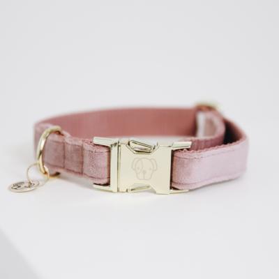 kentucky-dog-collar-velvet