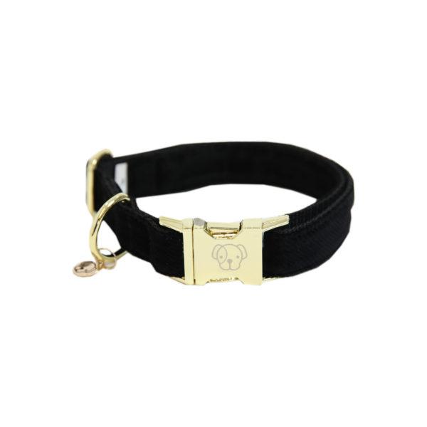 kentucky-dog-collar-corduro