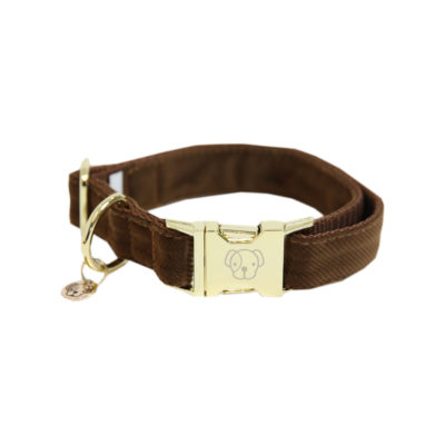 kentucky-dog-collar-corduro