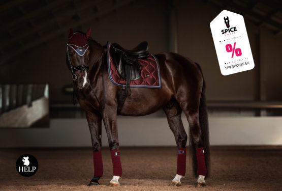 spicehorse-equestrian-stockholm-help