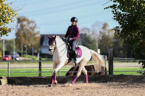 equestrian-stockholm-purple-gold-bandaze