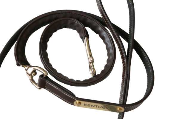 kentucky-leather-covered-chain-lead