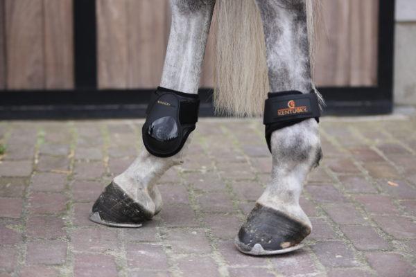 kentucky-young-horse-fetlock-boots
