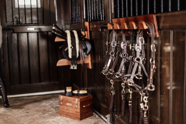 grooming-deluxe-bridle-