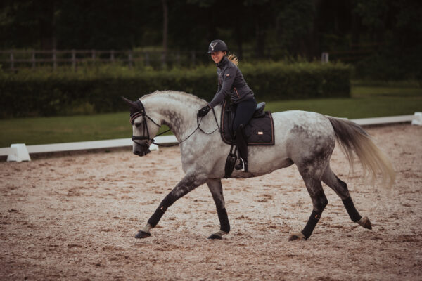 equestrian-stockholm-dressage-saddle-pad-dark-sky
