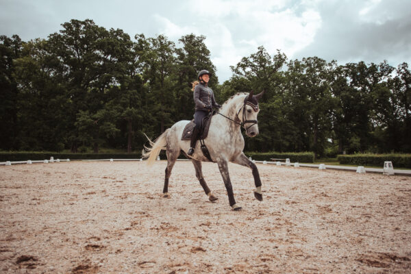 equestrian-stockholm-dark-sky-drezurna-podsedlova-decka