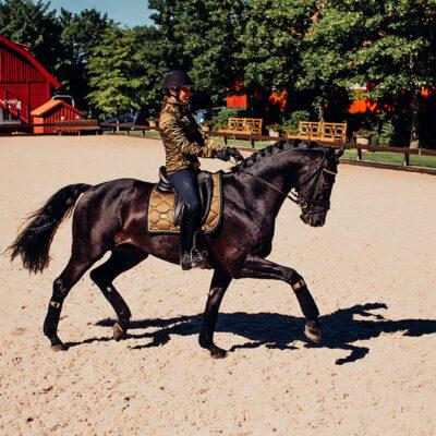 equestrian-stockholm-golden-brass