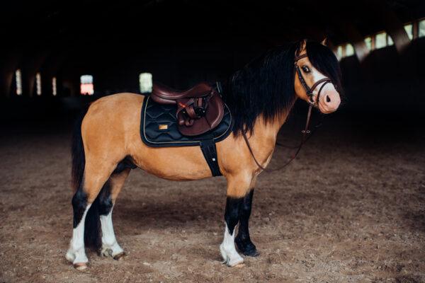 equestrian-stockholm-black-gold-skokova-podsedlova-decka-pony