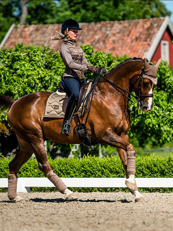 equestrian-stockholm-dressage-saddle-pad-champagne