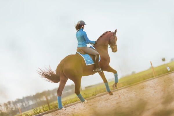equestrian-stockholm-dressage-saddle-pad-parisian-blue