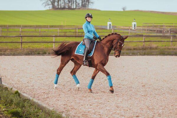 equestrian-stockholm-parisian-blue-drezurna-podsedlova-decka