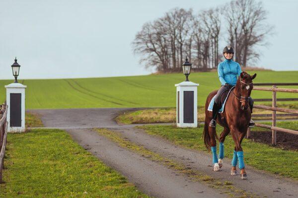 equestrian-stockholm-parisian-blue-bandaze