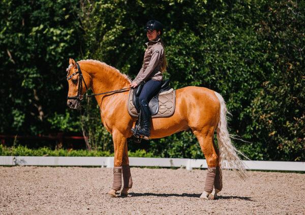 equestrian-stockholm-dressage-saddle-pad-champagne-cob