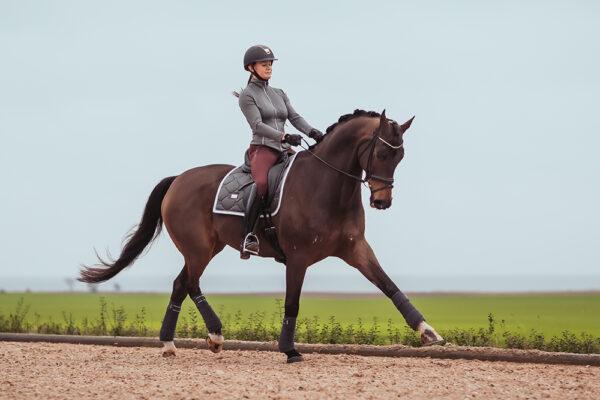 equestrian-stockholm-silver-cloud-drezurna-podsedlova-decka