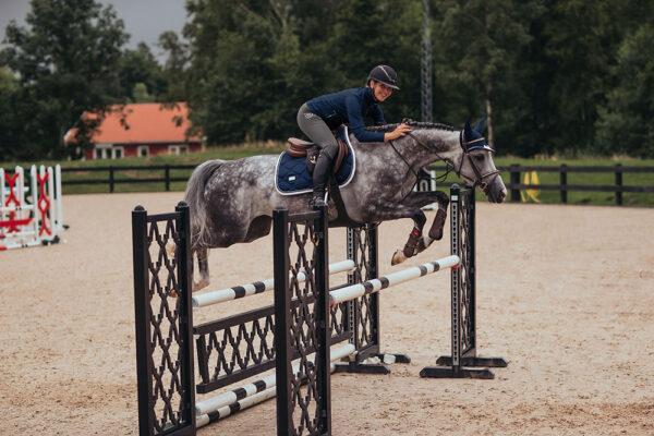 equestrian-stockholm-tights-jump-grey