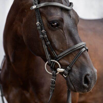 ps-of-sweden-bridle-stockholm-pony