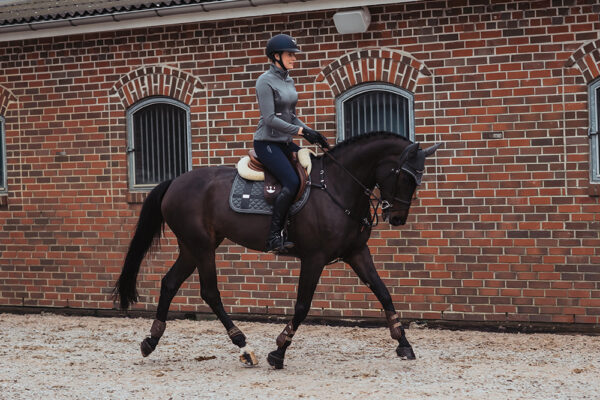 equestrian-stockholm-no-boundaries-silver-cloud-skokova-podsedlova-decka
