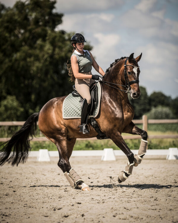 ps-of-sweden-dressage-saddle-pad-bow-thyme