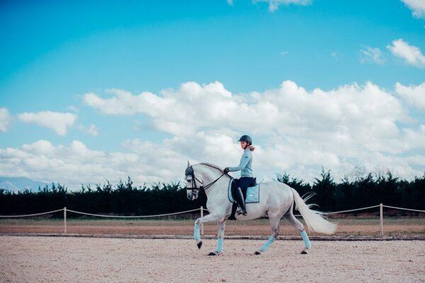 equestrian-stockholm-dressage-saddle-pad-ice-blue