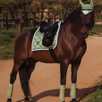 equestrian-stockholm-pistachio-white-drezurna-podsedlova-decka