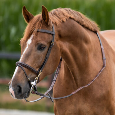 one-equestrian-training-bridle-with reins