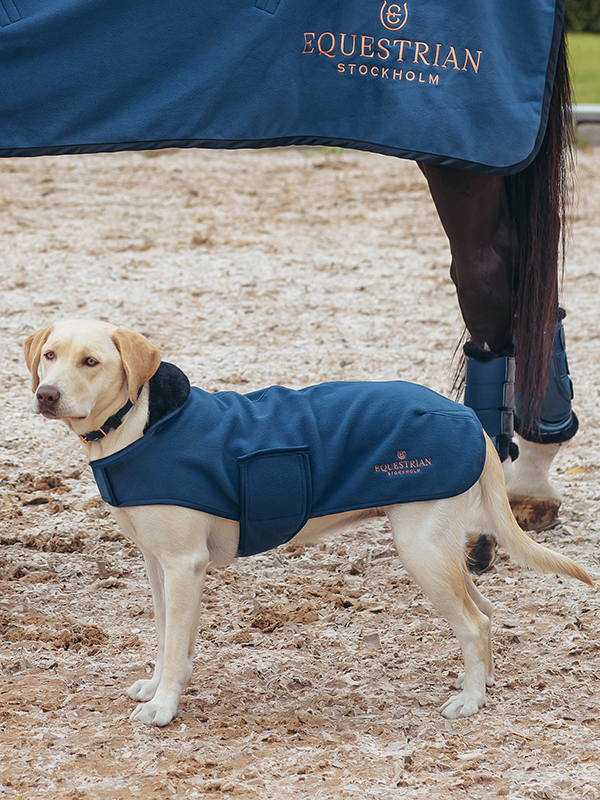 equestrian-stockholm-monaco-blue-kutyaruha