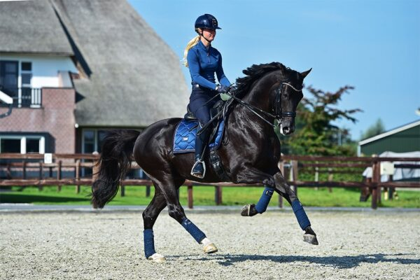 equestrian-stockholm-monaco-blue-drezurna-podsedlova-decka
