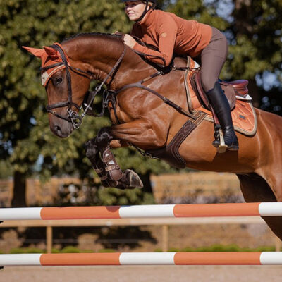 equestrian-stockholm-bronze-gold-ugro-nyeregalatet